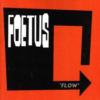 Foetus: Flow